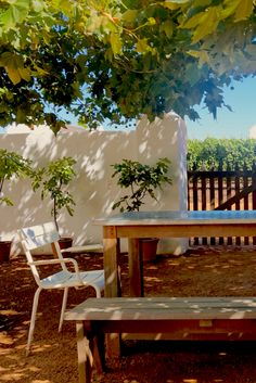 Possibly *the* most beautiful farm hotel in South Africa: Babylonstoren   The Travel Journo