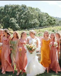 """Bash Please on Instagram: """"This wine country chic wedding is featured in @caratsandcake today! Gorgeous photos from our friend @paigejonesphoto ✨"""" Country Chic, Wine Country, Wedding Attire, Chic Wedding, Bridesmaid Dresses, Wedding Dresses, Instagram, Fashion, Bridesmade Dresses"""