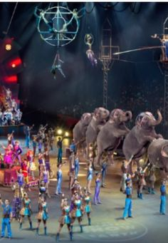 Ringling brothers coupons nj