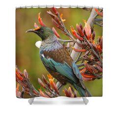 Calling Bird - Shower Curtain