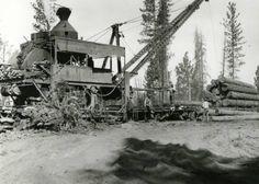 Steam loader hoisting logs onto railroad flatcars - Oregon