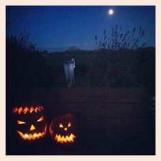 Halloween and a full moon :) Halloween Moon, Full Moon, Pumpkin Carving, Art, Harvest Moon, Art Background, Kunst, Pumpkin Carvings, Performing Arts