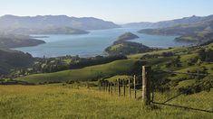 remote new zealand New Zealand Landscape, Remote, Concept, Mountains, Google Search, Tattoos, Nature, Travel, Tatuajes