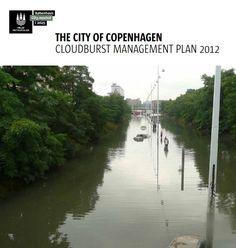 Copenhagen - Cloudburst Management Plan  http://en.klimatilpasning.dk/media/665626/cph_-_cloudburst_management_plan.pdf