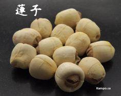 lian zi - lotus seed: http://kampo.ca/herbs-formulas/herbs/renshi/