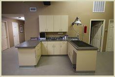 Animal Care Clinic | Veterinarian in Wallisville, TX