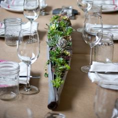 Living Centerpieces by Lila B. Date Palm filled with Succulents Photo by Sophie de Lignerolles