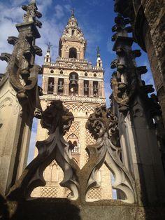 Visita Guiada para conocer los secretos y los símbolos de las puertas de la Catedral y conocerla desde el cielo en una perspectiva única