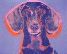 Andy Warhol dachsund ... he had 2 of his own Amos & Archie <3 <3