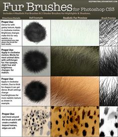 15 Sets of Free Fur Photoshop Brushes