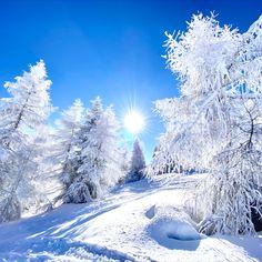 Wie schön kann ein Winter eigentlich sein? 🥰❄️⛄️☀️📸 Snow, Winter, Outdoor, Nice Asses, Winter Time, Outdoors, Outdoor Games, The Great Outdoors, Eyes
