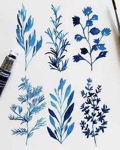 Botanicals in Prussian Blue Watercolor Plants, Watercolour Painting, Floral Watercolor, Painting & Drawing, Watercolors, Watercolour Tutorials, Beautiful Drawings, Floral Illustrations, Art Floral