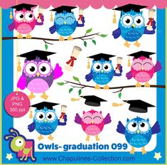 Colorful owls clipart for your graduation decorations, cards, diplomas, stickers, etc. This set includes 14 JPG and 14 transparent PNG