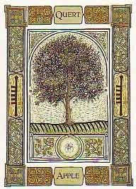 Apple is a symbol of creativity (as well as creation) and is an emblem of art and poetry. Apple trees are also associated with virtue and the tree (as well as the fruit) is a symbol of purity and mortherhood.
