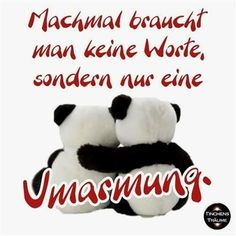 Richard Chamberlain, Panda Bear, Funny Pictures, Humor, Motivation, Words, Quotes, Gb Bilder, Fictional Characters