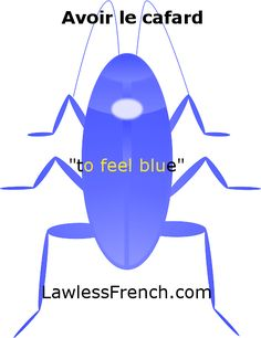 'Avoir le cafard' lesson: http://www.lawlessfrench.com/expressions/avoir-le-cafard/ #semainefrancaise