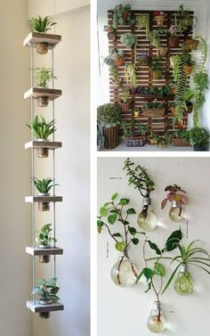 Hanging garden: 38 stunning inspirations to assemble! - Hanging garden: 38 stunning inspirations to assemble! Wedding … Hanging garden: 38 breathtaking inspirations to assemble! Hanging Plants, Indoor Plants, Hanging Herb Gardens, Vertical Gardens, Indoor Plant Decor, Small Herb Gardens, Diy Hanging Planter, Hanging Terrarium, Indoor Cactus