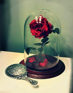 La rose dans un cloche globe en verre