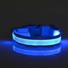 Namsan LED Reflective Dog Collar, Flashing cats LED Collar,Makes Your Dog Visible-M-Blue >>> Remarkable product available now. : Cat Collar, Harness and Leash