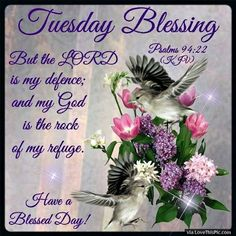 Tuesday Blessings Psalm 94:22  If God be for us; who can be against us?