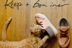 Bon Iver's Justin Vernon Designs Vegan Sneakers to Benefit Animals