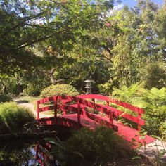 A warm haven for beautiful and often endangered plants Botanical Gardens Near Me, Endangered Plants, Miami Gardens, Garden Planters, Miami Beach, Organic Recipes, Garden Bridge, Organic Gardening, Places To Visit