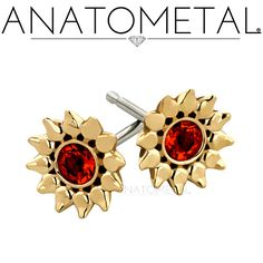 Anatometal Sinflower are cast in solid bronze, silver or 18 karat gold. Those are laser welded onto an implant grade stainless or solid 18 karat gold standard earring post.
