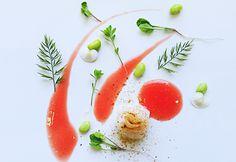 Stefano+Cilia+e+la+Food+Art:+quando+un+piatto+disegna+un'opera+d'arte.