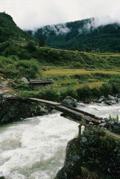 Wooden Bridge Over Rushing River, Paro Valley, Bhutan. Paro is one of the most historic valleys in Bhutan. Both trade goods and invading Tibetans came over the pass at the head of the valley, giving Paro the closest cultural connection with Tibet of any Bhutanese district. (V)