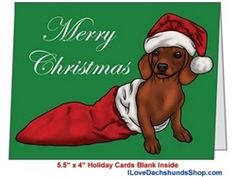 Dachshund Christmas Folded Card Short Hair in Stocking