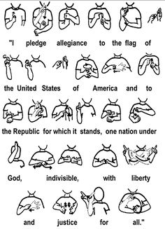 asl books for beginners | american-sign-language-pledge-of-allegiance