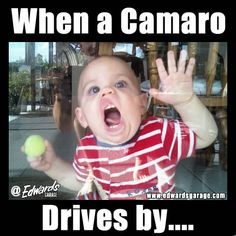 We see this a lot on our showroom windows...... The cleaning lady is going to start charging extra for drool removal..... #Camaro #Meme