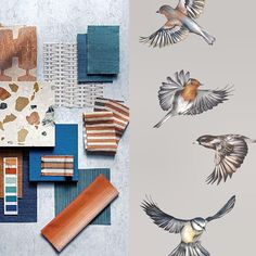 A great start to the week to see that our new Early Bird wallpaper is on trend with @homesandgardensuk seasonal palette! Launching at @decorex_international @decorex #makingluxury #colour #trends #birds #wallpaper #wallcoverings #drawing #illustration #design #detail #inspiration #inspo #luxury #lifestyle #interiors #homedecor #interiordesign