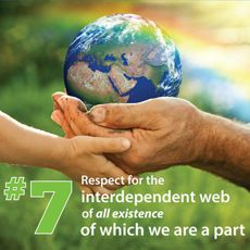 7th Principle: Respect for the Interdependent Web of All Existence of Which We Are a Part