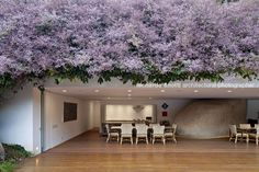 isay weinfeld - fazenda 3 pedras/pavilion | leonardo finotti