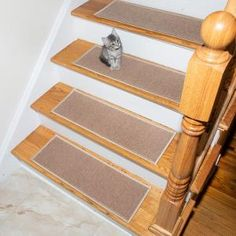 Ottomanson Escalier Collection Light Beige 8 in. x 26 in. Rubber Back Stair Tread (Set of Beige/Ivory Stair Tread Rugs, Carpet Stair Treads, Carpet Stairs, Dark Beige, Light Beige, Marble Stairs, Hardwood Tile, Wooden Staircases, Beige Carpet