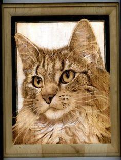 Pyrography  cat.