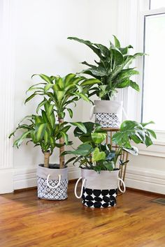Potted Plant Fabric Basket Tutorial By: Laura from a Beautiful Mess Indoor Planters, Diy Planters, Planter Ideas, Fall Planters, Plants Indoor, Garden Planters, Herb Garden, Handmade Home Decor, Diy Home Decor
