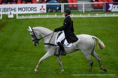Paul Tapner riding Kilronan AUS in dressage Mitsubishi Motors Badminton Horse Trials | Dressage Day One 2014