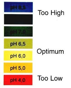 Marijuana responds best to a pH level of between 5.5 and 6.5 when it is grown hydroponically.