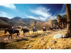 Horse Back Riding in Beautiful Palm Springs!~