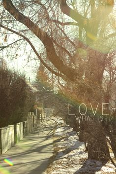 Love what is - My first photography & photoshop combo creation.