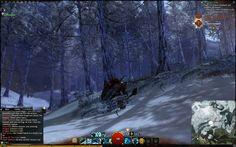Guild Wars BWE 2 - Screenshots of Vampero !