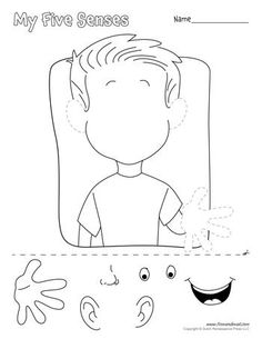 A printable five senses matching worksheet for preschool students and teachers.