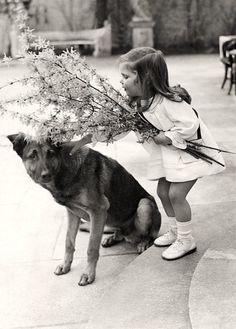 Helga Goebbels z psem Hitlera.