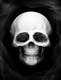 Faceted Skull by The Real Paul Johns, via Flickr - Graphic Design