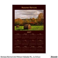 Fantastic Foliage Northeastern Trees 2017 Nature Calendar