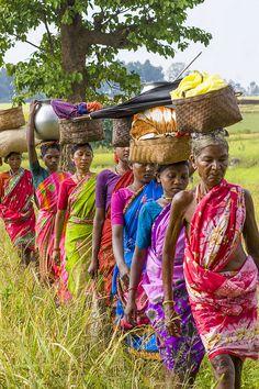 Going to the Alnar market, Chhattisgarh, India