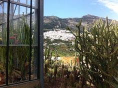 Casarabonela, desde el cercano Jardín Botánico
