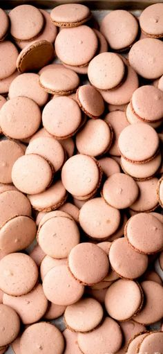 Basic Macarons - Italian Meringue Method - learn all the secrets to perfect macarons in step by step photo tutorial. #Dessert #Macarons #Meringuerecipe Cookie Recipes From Scratch, Healthy Cookie Recipes, Healthy Cookies, Dessert Recipes, Desserts, Top Recipes, Amazing Recipes, Healthy Chocolate Chip Cookies, Italian Meringue